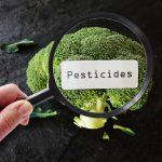 pesticides and endometriosis risks