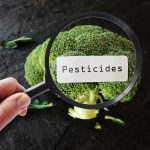 pesticides and endometriosis risks
